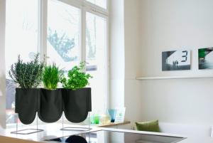 Paredes claras, espacios libres, luminosidad y plantas. Amplitud garantizada.