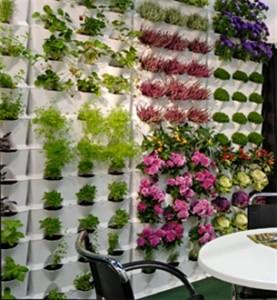 Muro vegetal para plantas de Minigarden.