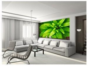 Fotomural con motivo natural, perfecto para espacios con colores planos.