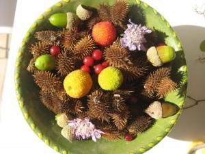 Composición hecha con bellotas, frutos del madroño, florecillas de otoño y bayas secas. Hecha por nuestra redactora favorita.